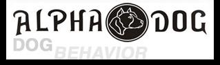 ALPHA DOG Hundeschule Mannheim und Umgebung