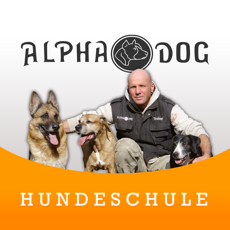 Holger Langlotz / Hundetrainer